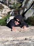 Mountain Climbing in Lake Tahoe